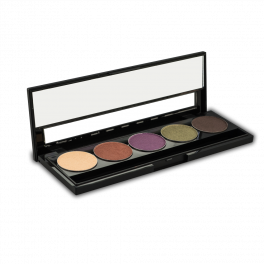 Buy a private label eyeshadow palette, create your own makeup palette