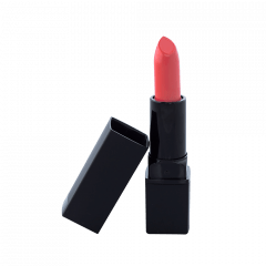 Lipstick Standard Packaging - All night long (C)