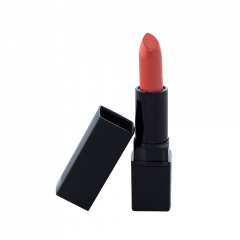 Lipstick Standard Packaging - Day Dream (C)