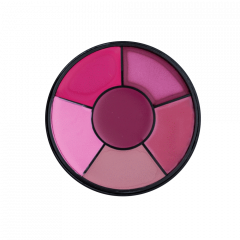 Lipstick Wheel Pink Lady Mattified